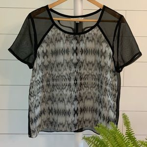 🌻American Eagle Outfitters Short Sleeve Sheer Top